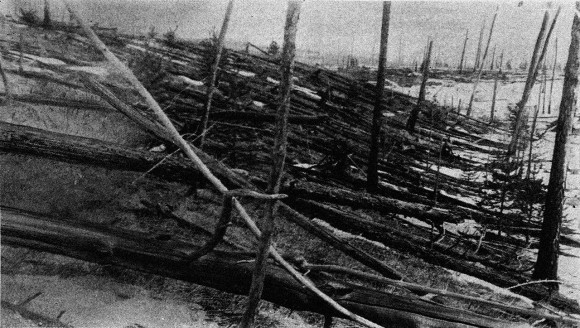 The Tungunska impactor is thought to have felled millions of trees in Siberia in 1908 (image credit: Kulik).